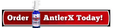 Buy AntlerX