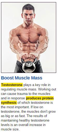 testostrong-1