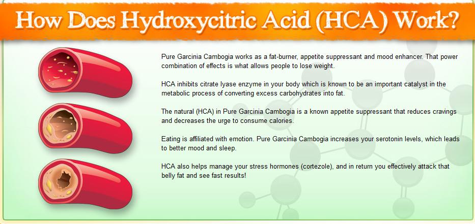 HCA and Garcinia Cambogia